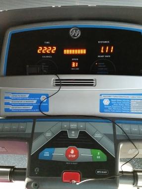 TreadmillWalkingPic